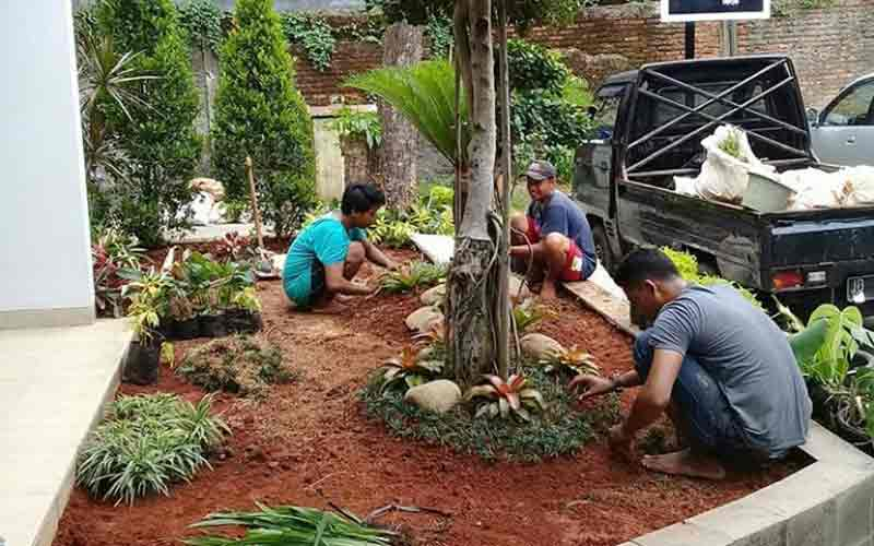 Jasa Pembuatan Taman di Cilacap